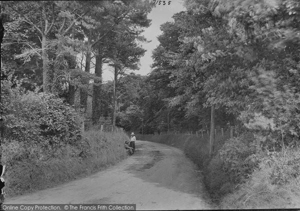 Aberystwyth, Cwm Woods 1921