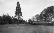 Abinger Common, 1921