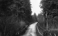 Abinger Common, Pasture Wood Road 1906