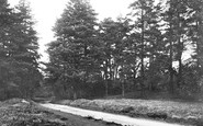 Abinger Common, Road To Friday Street 1921