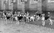Abinger Common, Wotton House, The Hounds c.1965