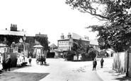 Addlestone, 'holly Tree' 1904