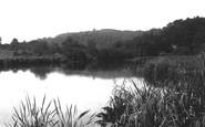 Albury, Albury Mill Ponds 1902