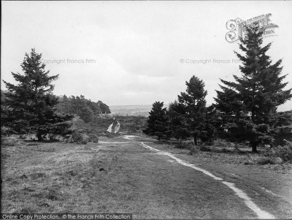 Albury, Heath From The Warren 1925