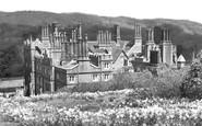 Albury, Park, Daffodil Time c.1960