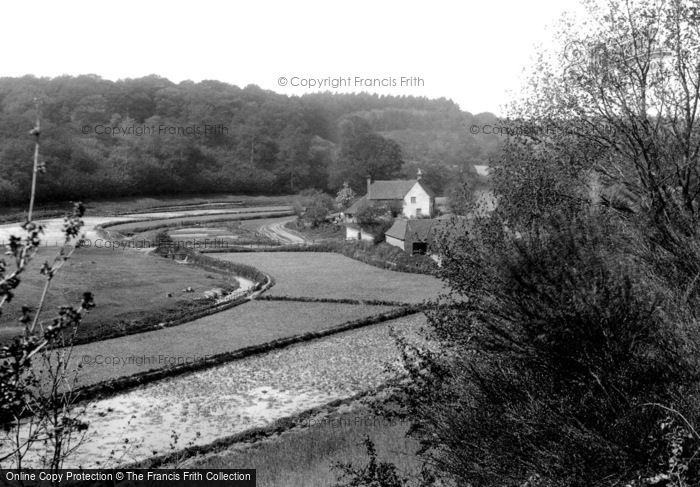 Albury, Watercress Beds 1909