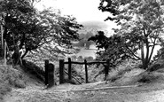 Alderley Edge, The View From The Edge c.1955