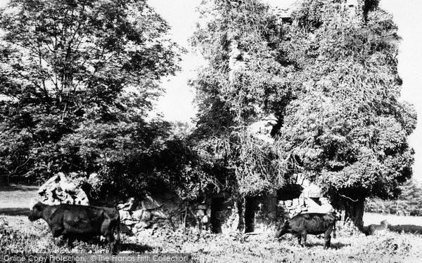 Alford, Asloun Castle 1949