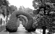 Alton Towers, The Yew Arches c.1955