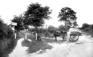 Andover, Ladies' Walk 1904