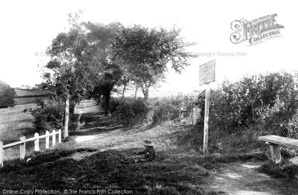 Andover, Ladies Walk 1906