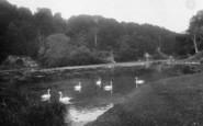 Arundel, Swanbourne Lake 1928