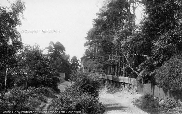 Ascot, Bog Hill 1901