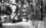 Ascot, Bog Lane 1901