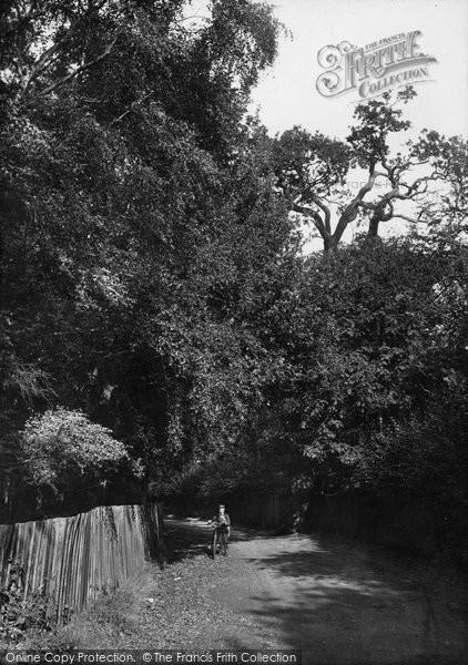 Ascot, Sandy Lane 1906