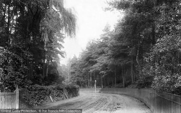 Ascot, Station Road 1903
