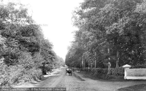 Ascot, Swinley Road 1906