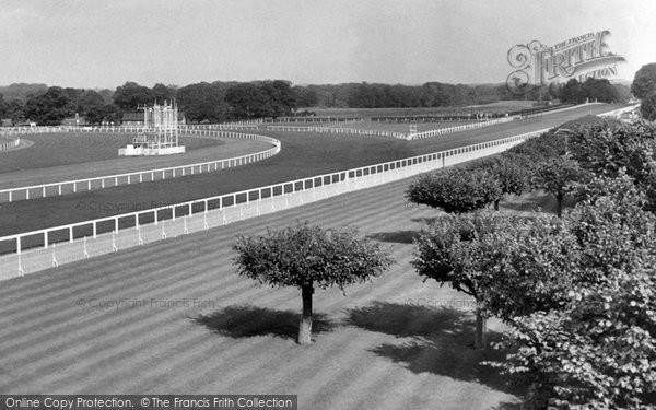 Ascot, The Straight Mile c.1955