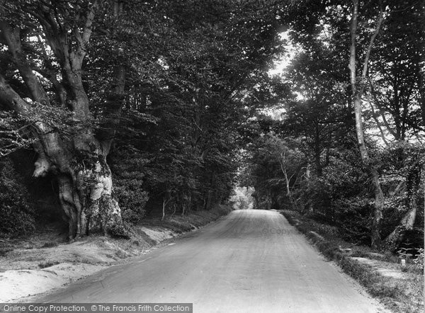 Ashdown Forest, Near Forest Row 1927