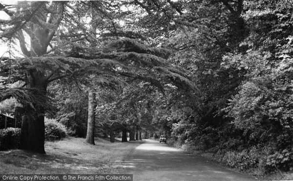 Ashtead, Church Walk c.1955