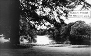 Auldgirth, The River Nith c.1960