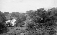 Aysgarth, Bear Park 1887