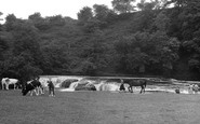 Aysgarth, Upper Falls c.1955