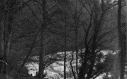 Aysgarth, Upper Falls From Woods c.1932