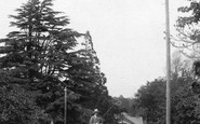 Bagshot, Horse And Cart 1903