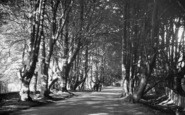 Balcombe, Beeches c.1955