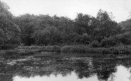 Balcombe, Lower Lake c.1955