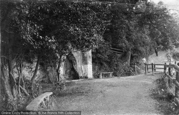 Barnstaple, Anchor Wood 1890
