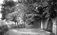 Barnstaple, Anchor Woods 1919