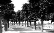 Barnstaple, North Walk 1890