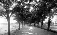 Barnstaple, The South Walk 1894