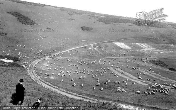 Beachy Head, The Downs 1912