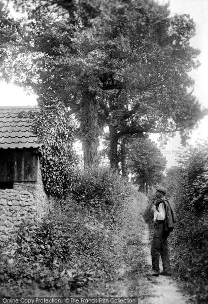 Beaminster, Furze Lane 1907