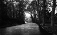 Beccles, Bungay Road c.1910