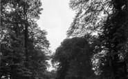 Beccles, Bungay Road Corner 1923