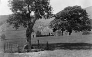 Beddgelert, Gelert's Grave c.1950