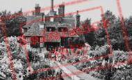 Beddington, The Flowered Walk, The Grange 1950