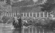 Beddington, Washing The Cart 1894