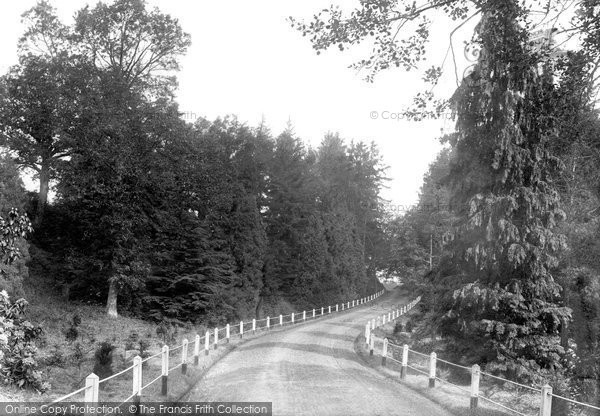 Bedgebury, Park, The Drive 1902