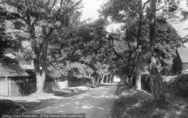 Bembridge, The Avenue 1923