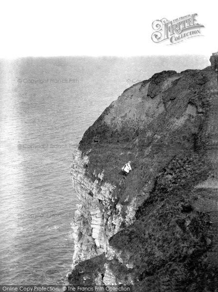 Bempton, Cliffs 1908