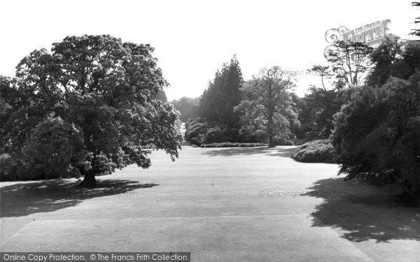 Berkhamsted, Queen Victoria's Oak, Ashridge Gardens c.1960