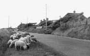 Berrow, Coast Road c.1950