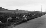 Berrow, Sand Hills c.1939
