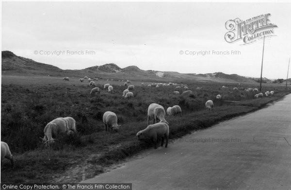 Berrow, Sand Hills c.1950