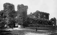 Berry Pomeroy, Castle c.1861